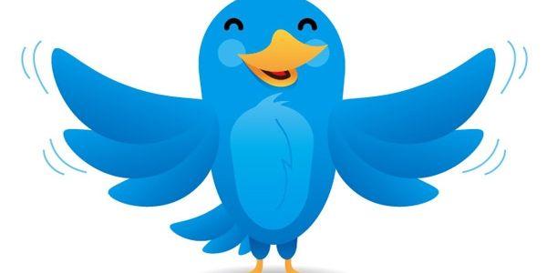 Twitter için Türkiye'deki kullanıcılarının değeri nedir?